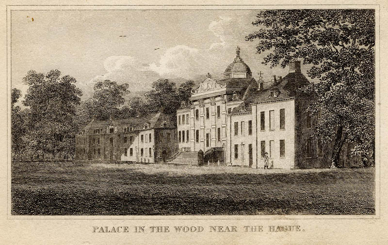 Palace in the wood near The Hague by nn
